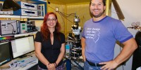 New research sheds light on neuronal communication