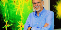 NIH Awards $2 Million to MPFI Scientist to investigate neural circuits in the visual cortex