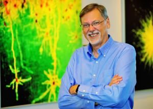 NIH Awards $2.4 Million to MPFI Scientist to investigate neural circuits in the visual cortex