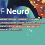 The Future of Neuroscience Now Online - Max Planck Neuroscience Launches  Research and News Site for Scientific Community