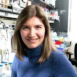Viviana Gradinaru, Ph.D.